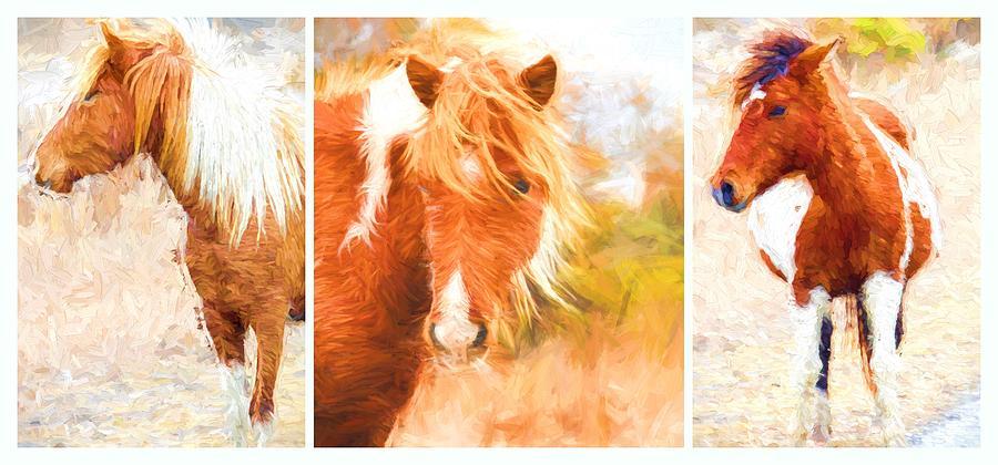 Ponies Photograph - Wild Ponies Triptych by Alice Gipson