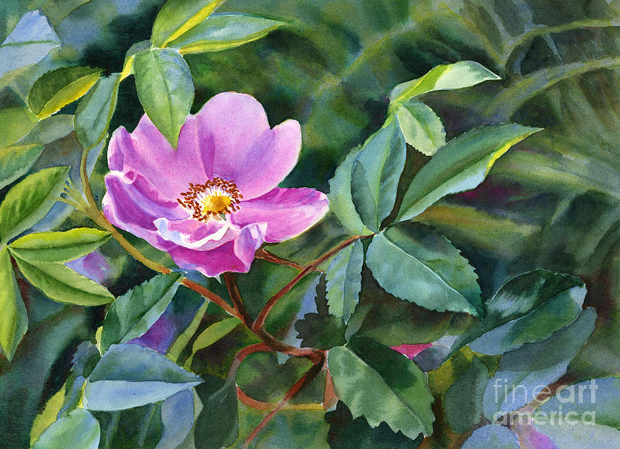 Rose Painting - Wild Rose Blossom 2 by Sharon Freeman