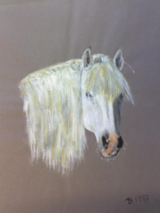 Horse Painting - Wild by Stephen Thomson