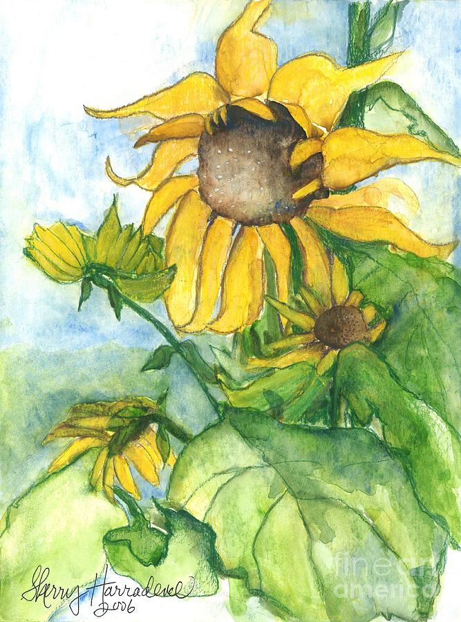 Orchards Painting - Wild Sunflowers by Sherry Harradence