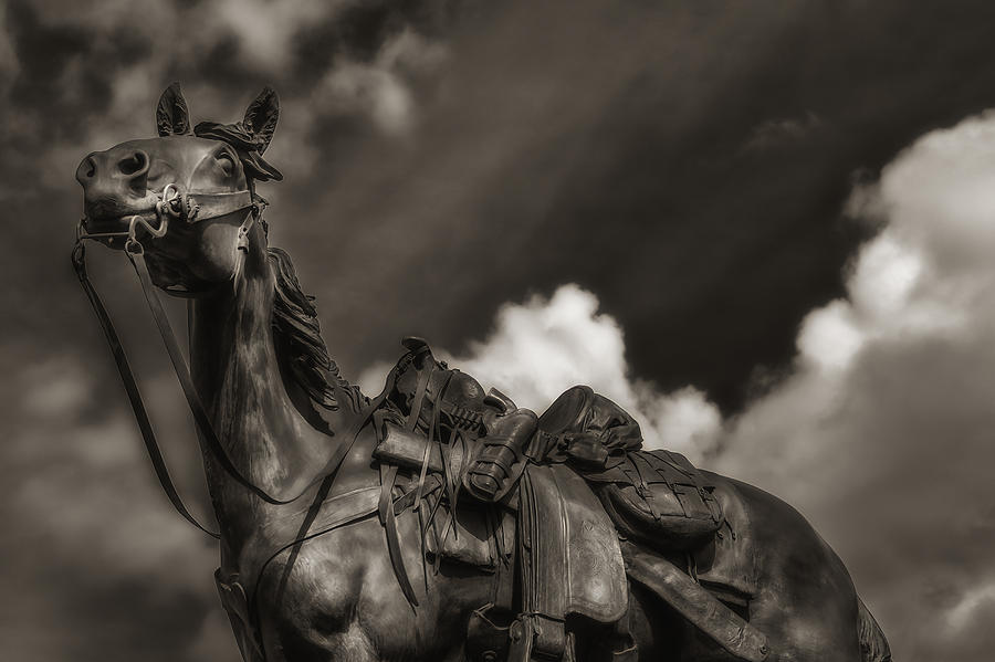 Horse Photograph - Wild West Sculpture by Ron White