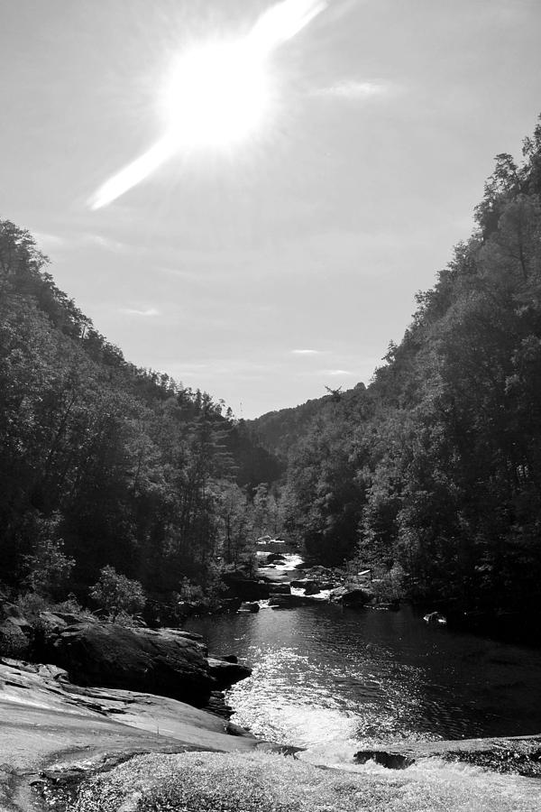 Black And White Photograph - Wilderness At Noon by James Potts