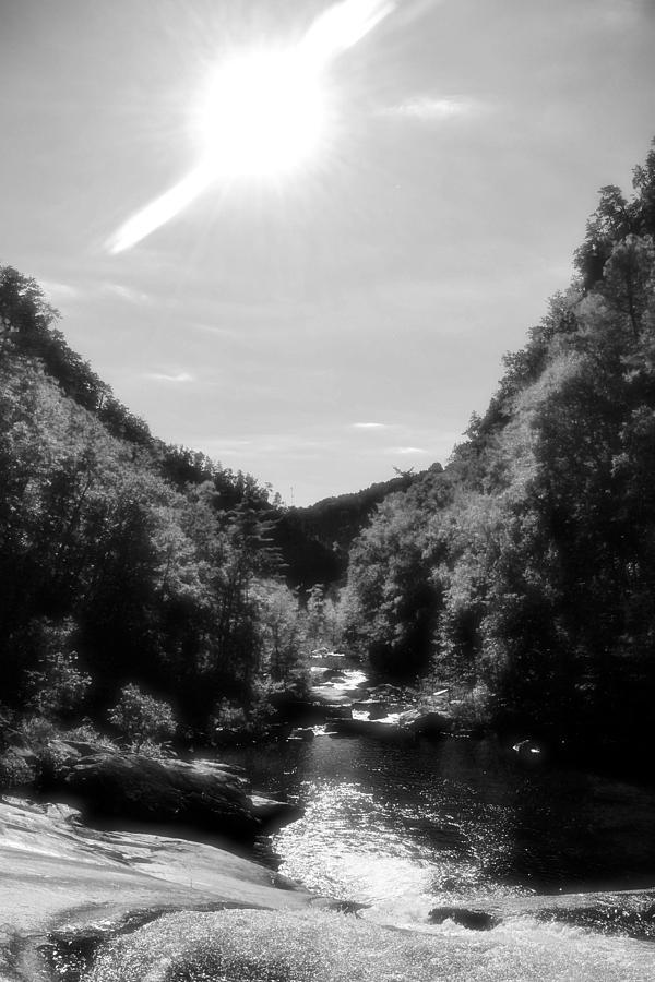Georgia Photograph - Wilderness Of Appalachia by James Potts