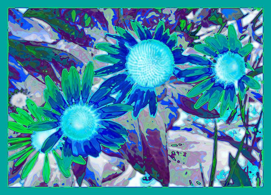 Wildflower Photograph - Wildflower by Tom Druin