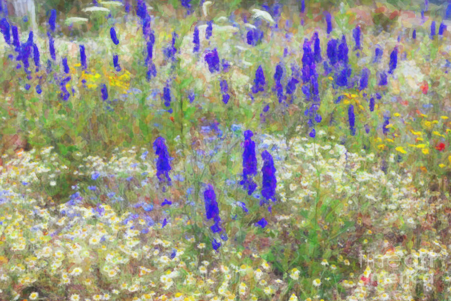 Wildflowers Photograph - Wildflower Watercolour by Tim Gainey