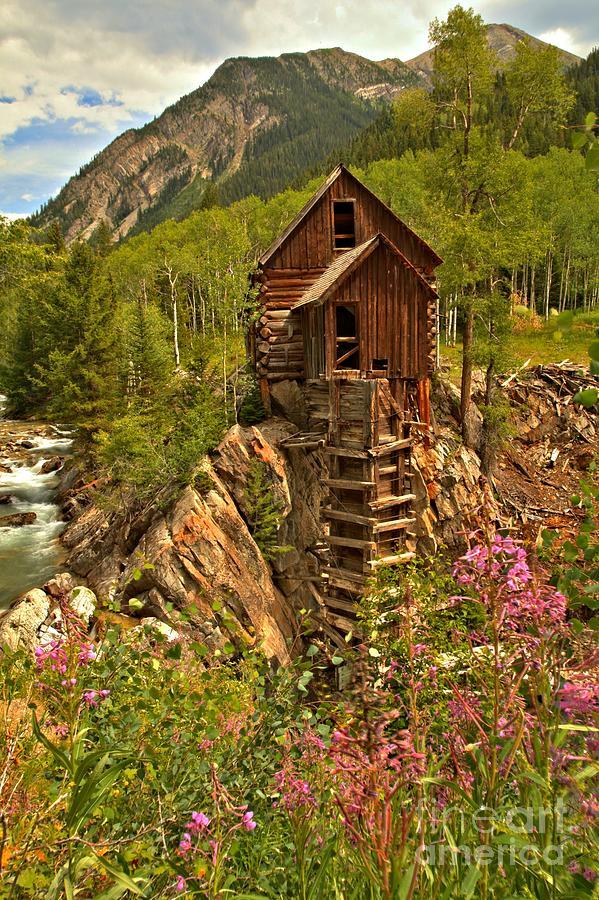 Crystal Colorado Photograph - Wildflower Wonderland by Adam Jewell