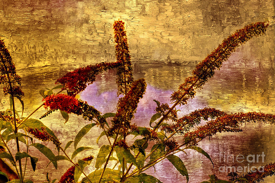 Flower Photograph - Wildflowers At The Pond by Elaine Manley