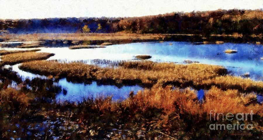 Marsh Photograph - Wildlife Preserve by Janine Riley