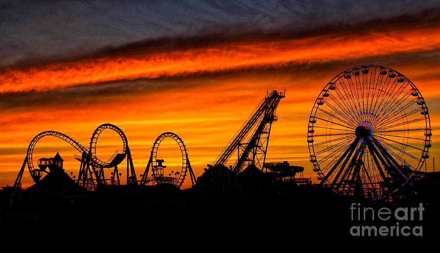 Wildwood Photograph - Wildwood At Dawn by Mark Miller