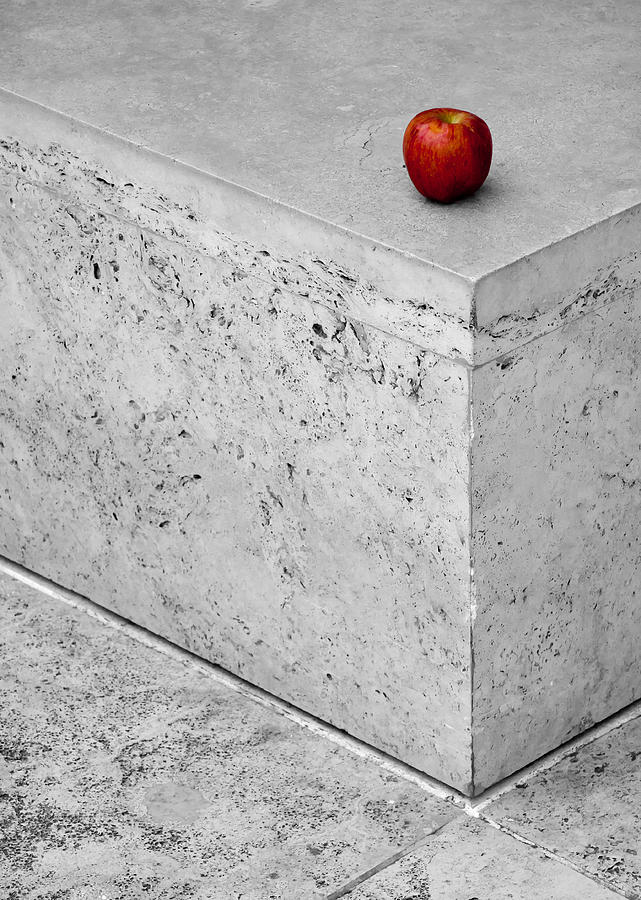 Apple Photograph - Will Someone Take You Home? by Alexis Birkill