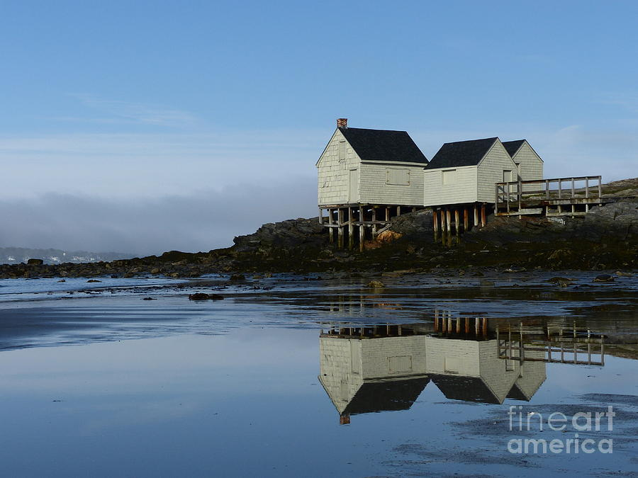 Willard Beach Shacks Reflection by Christine Stack