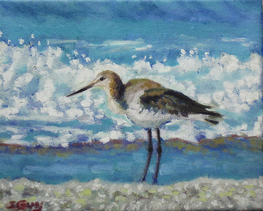Wildlife Painting - Willet by Sharon Guy