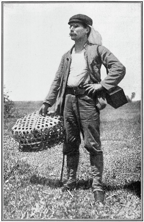 1899 Photograph - William Dinwiddie (1867-1934) by Granger
