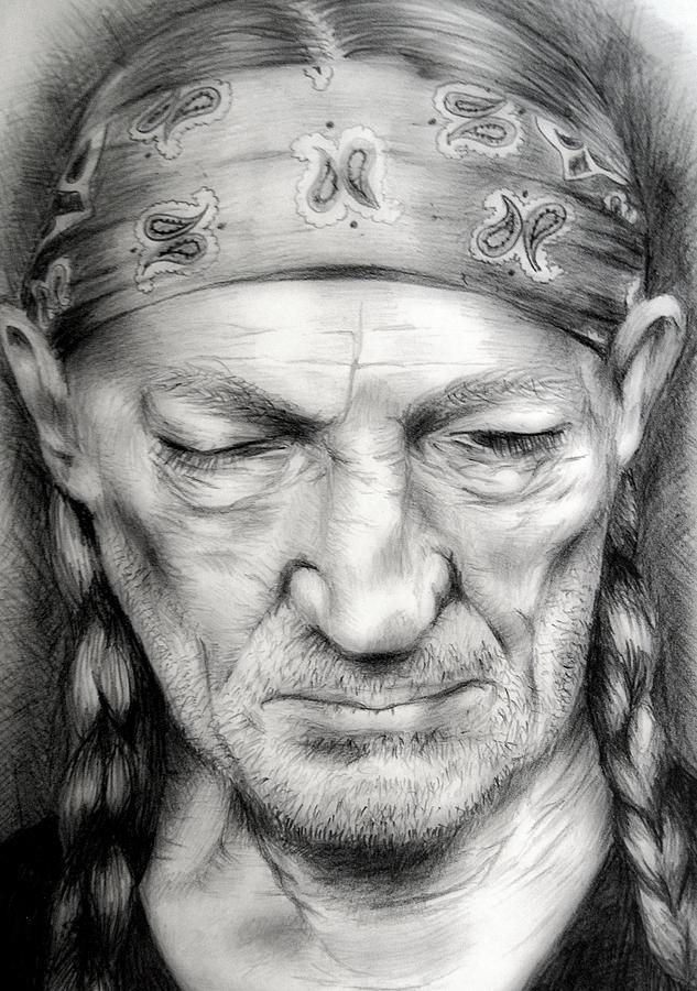 Willie Drawing - Willie by Stephanie LeVasseur