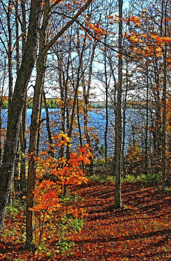 Willow Lake Photograph - Willow Lake by Bill Morgenstern