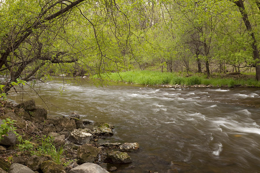 Willow Photograph - Willow River 3 by John Brueske