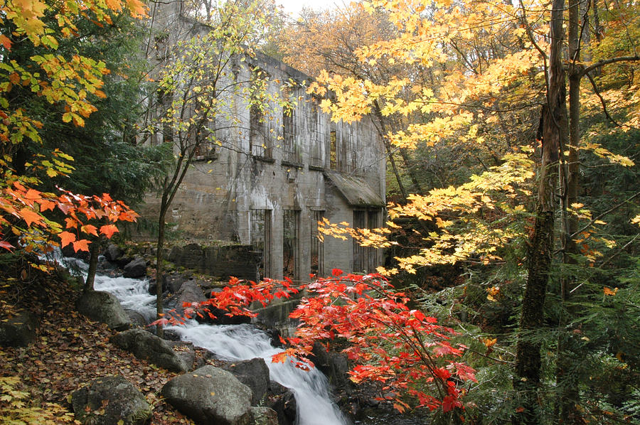 Pixels Photograph - Willsons Ruins In Gatineau Park In Quebec by Rob Huntley