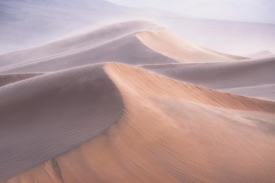 Dunes Photograph - Wind by Inigo Cia