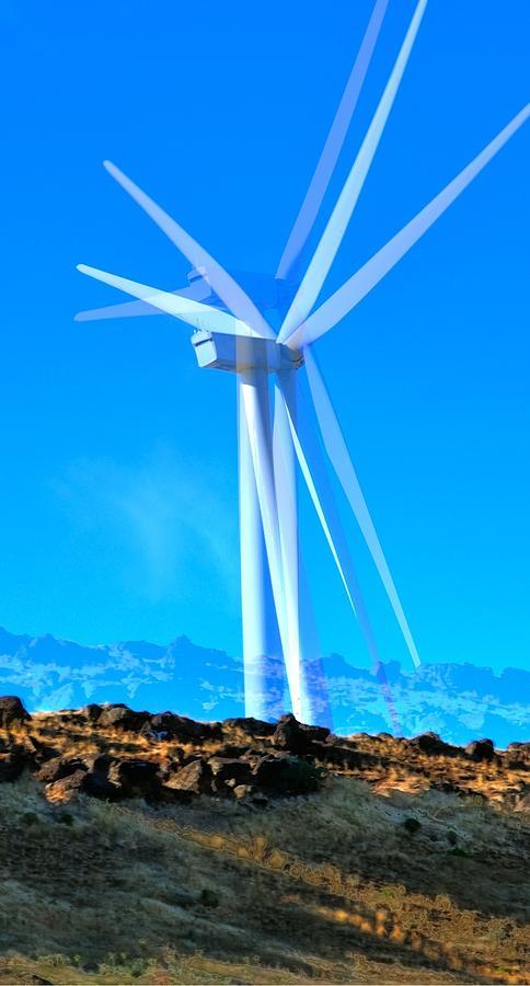 Wind Turbines 16759 Photograph