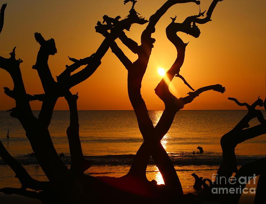 Jekyll Island Photograph - Winding Light by Marty Fancy