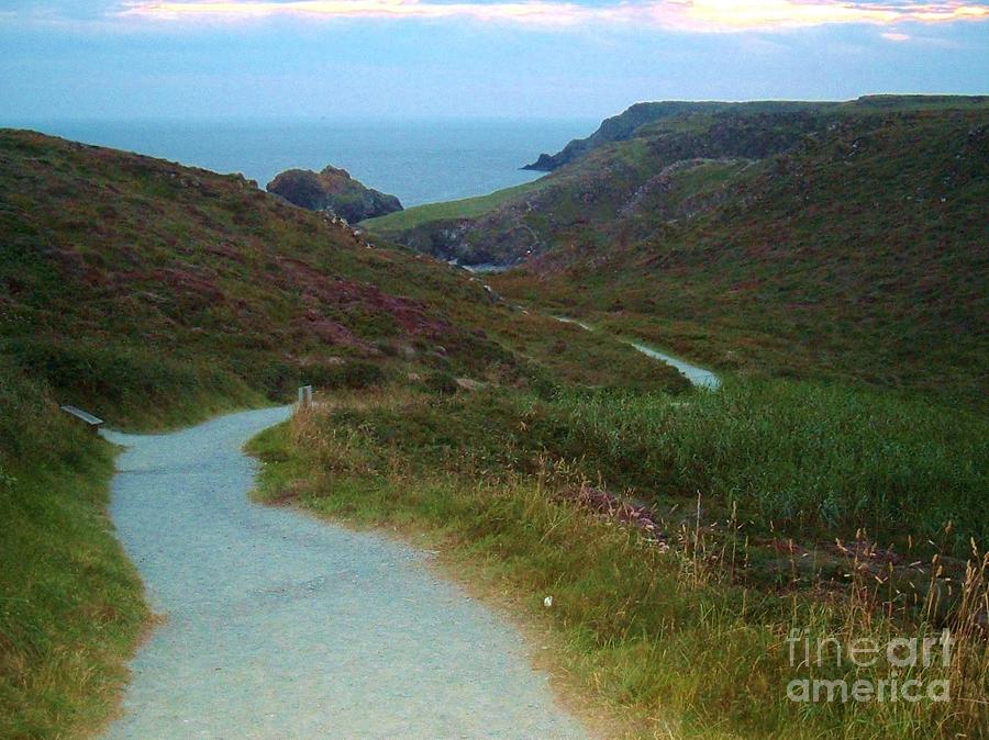 Path Photograph - Winding Path by Lisa Byrne