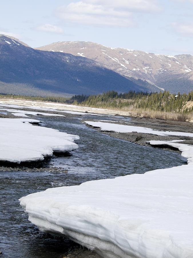 Winding Photograph - Winding River by Tara Lynn