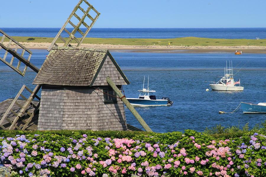 Amazing Windmill Cape Cod Part - 8: Cape Cod Photograph - Windmill And Hydrangeas On Chatham Waterfront Cape Cod  By John Burk