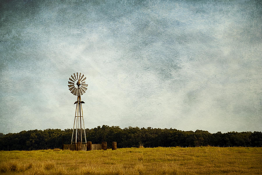 Windmill on the Farm by Beverly Stapleton