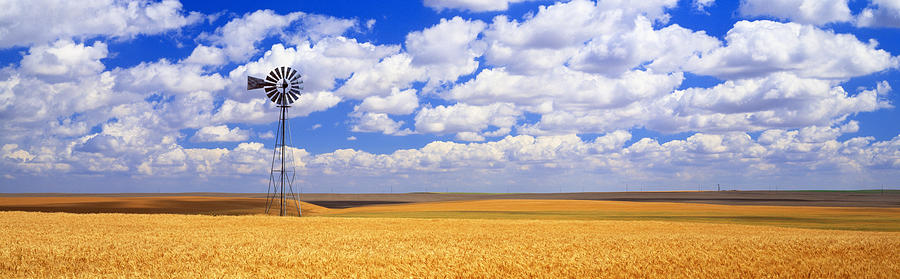 Color Image Photograph - Windmill Wheat Field, Othello by Panoramic Images