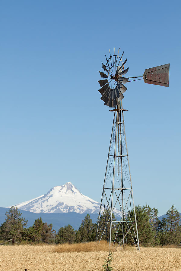 Windmill Photograph - Windmill with Mount Jefferson in Central Oregon by David Gn