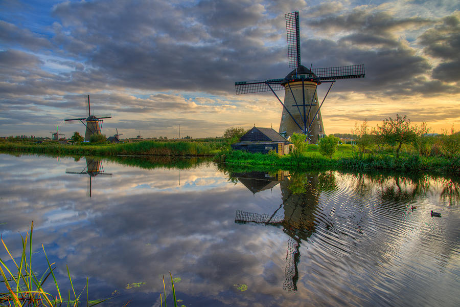 Windmill Photograph - Windmills by Chad Dutson