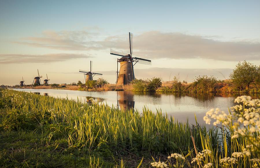 Windmills in Kinderdijk (Netherlands) Photograph by Brzozowska