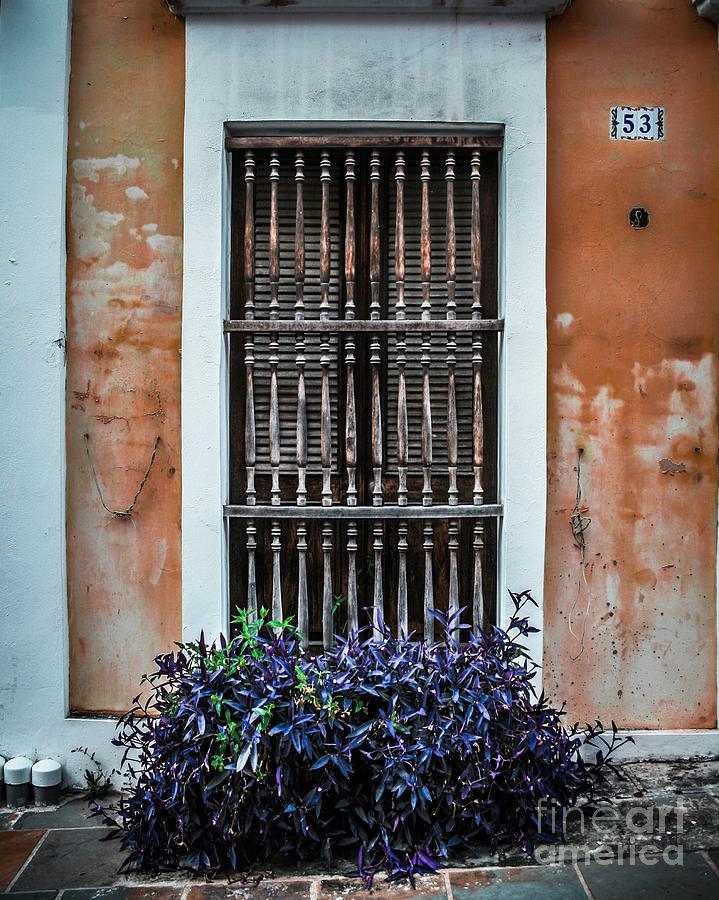 Door Photograph - Window 53 by Perry Webster