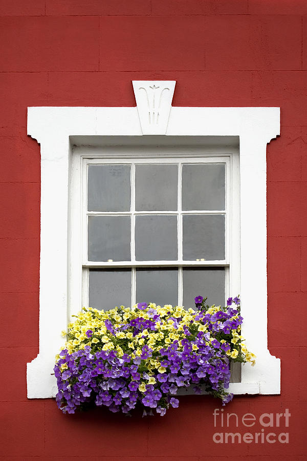 Bold Photograph - Window And Walls Triptych - Canvas 2 by Natalie Kinnear