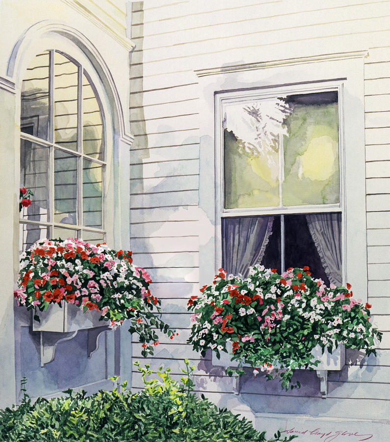 Watercolor Painting - Window Boxes by David Lloyd Glover