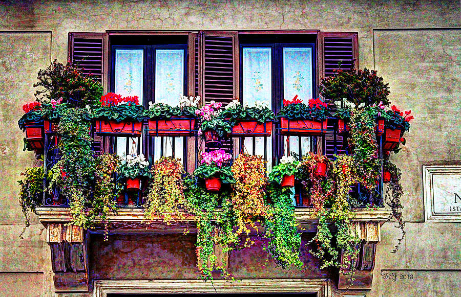 Rome Photograph - Window Flower by Francisco Colon