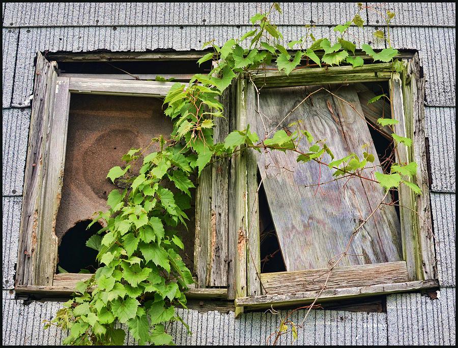 Window Photograph - Window Shade 2 by Jeffrey Platt