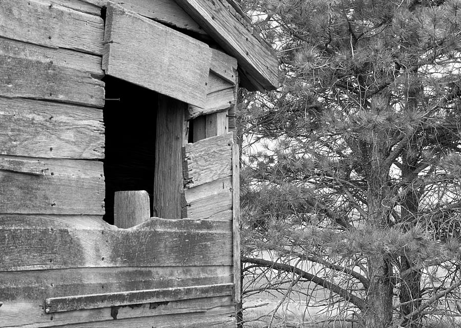 Window Photograph - Window To Nowhere - Black And White by Cindy Angiel