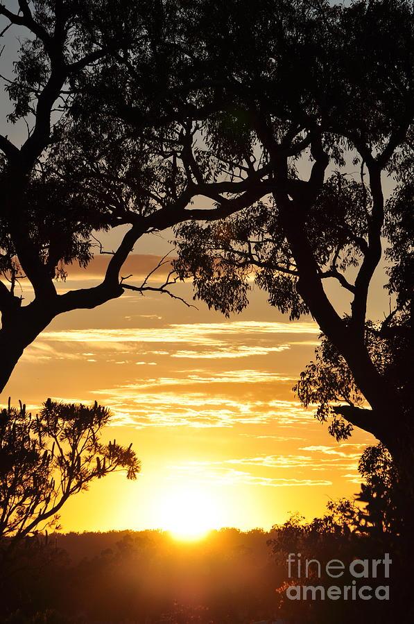 Sun Photograph - Window to the Soul Sunlit Oracle by Coralie Plozza