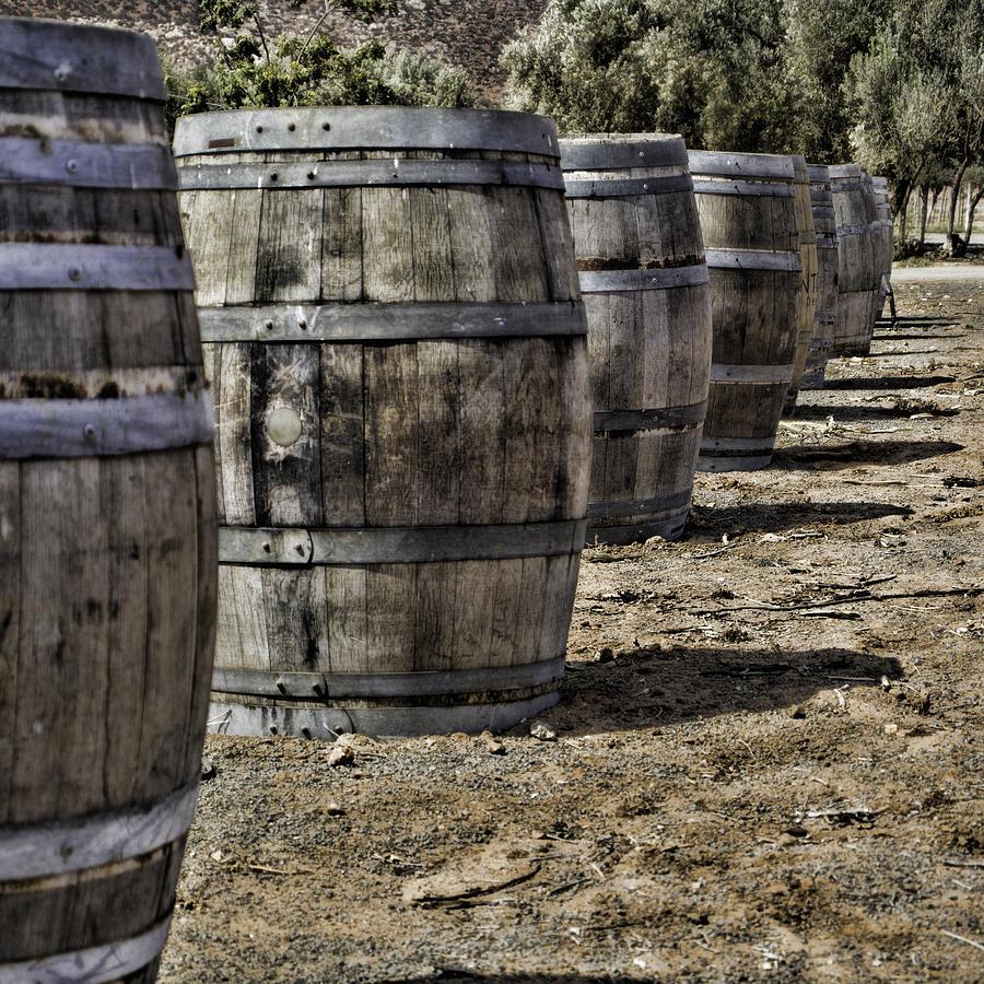 Wine Barrels Photograph - Wine Barrels by Donna Miller