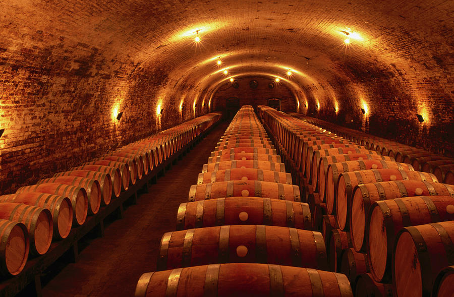 Wine Barrels In Maturation Cellar Photograph by Oliver Strewe