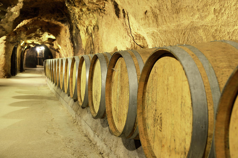 Wine Cellar Photograph by Fmajor