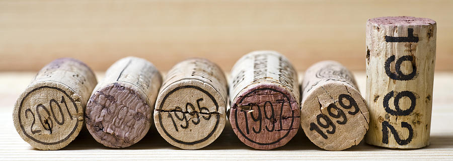Wine Photograph - Wine Vintages by Frank Tschakert