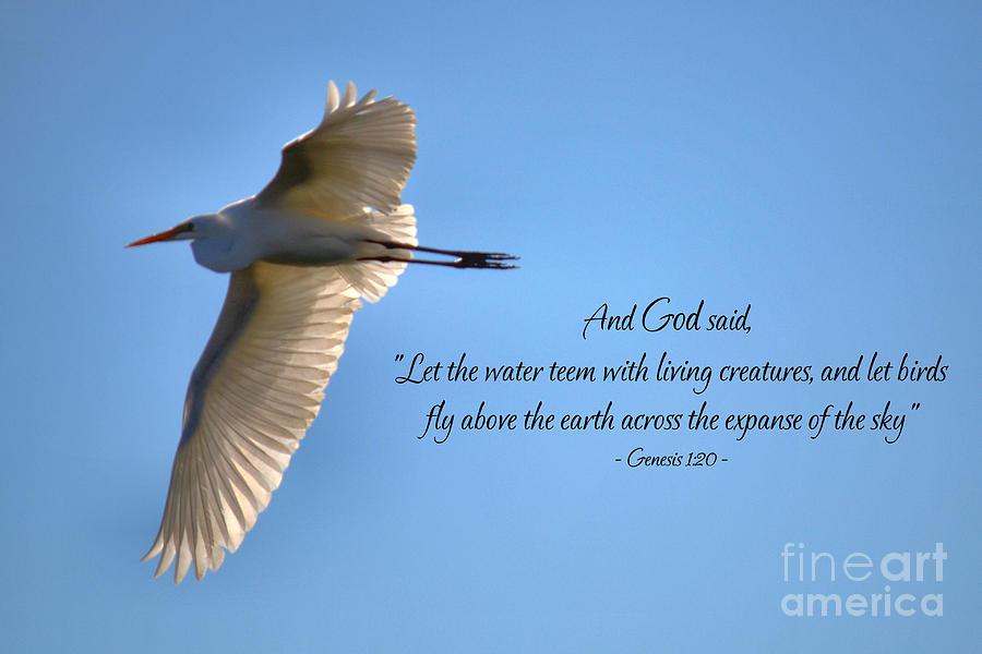 Wings of Faith