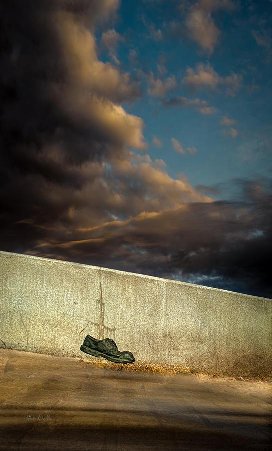 Shoe Photograph - Wingtips  by Bob Orsillo