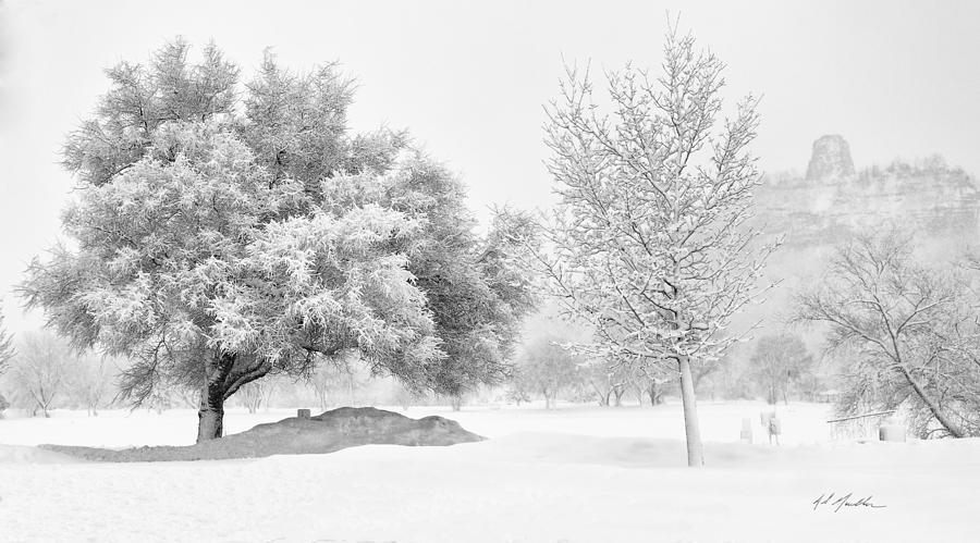 Snow Photograph - Winona Snowstorm by Al  Mueller