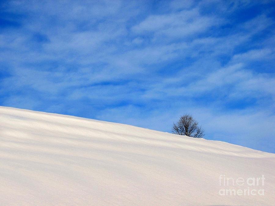 Blue Photograph - Winter 1 by Vassilis Tagoudis