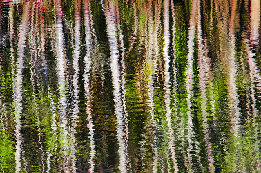 Water Photograph - Winter Abstract by Carolyn Marshall