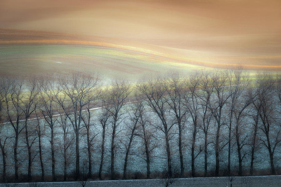 Alley Photograph - Winter Alley by Marek Boguszak