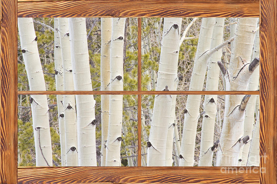 how to make a barn window picture frame